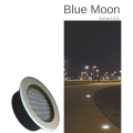 Blue Moon 2.png